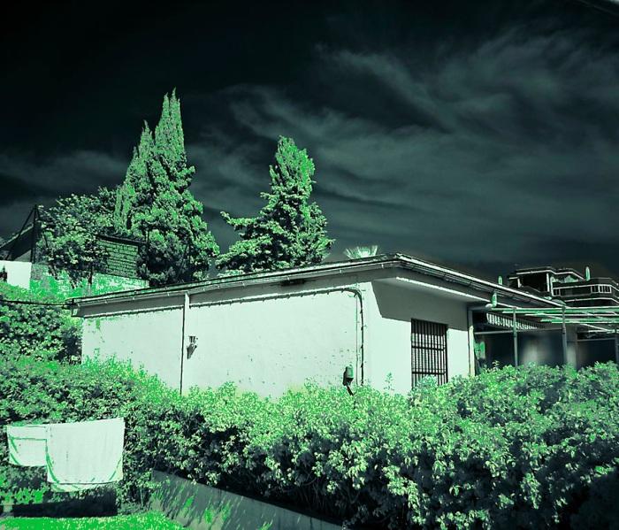 IR-850-FC-fotografia-infrarroja-falso-color